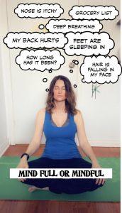 Mind Fullness or Mindfulness
